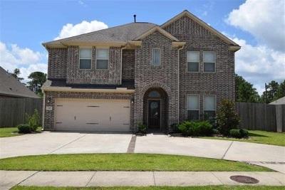 Lumberton Single Family Home For Sale: 117 King Palms Way