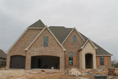 Beaumont Single Family Home For Sale: 6135 Carrie