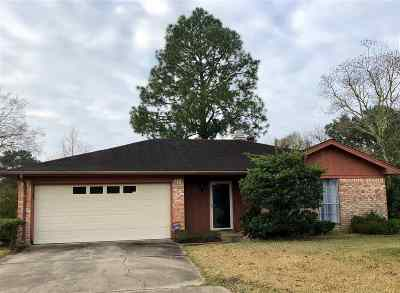 Beaumont Single Family Home For Sale: 5905 Falcon Ln