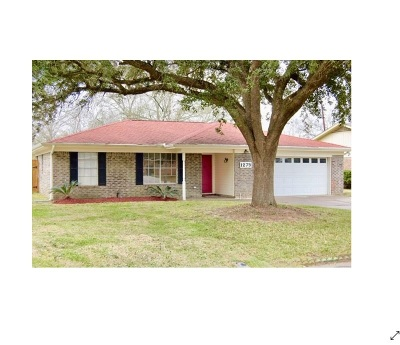 Beaumont Single Family Home For Sale: 1275 Elaine Drive