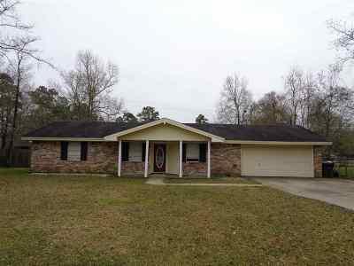 Vidor Single Family Home For Sale: 1642 Rachel Place