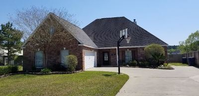 Lumberton Single Family Home For Sale: 140 Rachel Lane