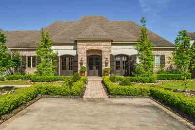 Beaumont Single Family Home For Sale: 4340 Christina Court