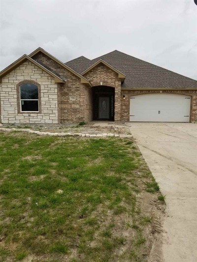 Beaumont TX Single Family Home For Sale: $241,080