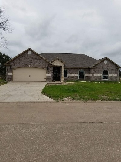 Beaumont Single Family Home For Sale: 4330 Captain Kidd Way