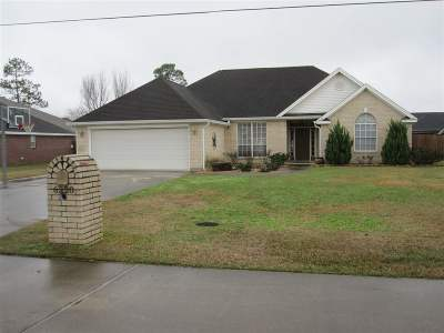 Lumberton Single Family Home For Sale: 6320 Jenny Lane