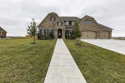 Beaumont Single Family Home For Sale: 15005 Michelle Lane