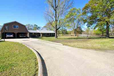 Vidor Single Family Home For Sale: 1534 Texla