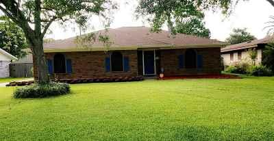 Nederland Single Family Home For Sale: 3108 Lawrence