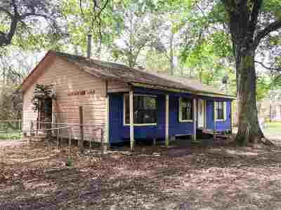 Vidor Single Family Home For Sale: 990 Springdale