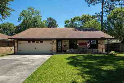 Nederland Single Family Home For Sale: 3017 Uvalde