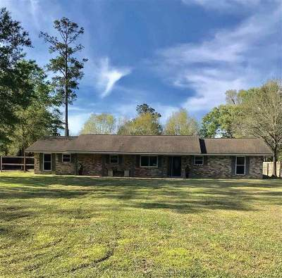 Beaumont Single Family Home For Sale: 422 Piney Point Dr