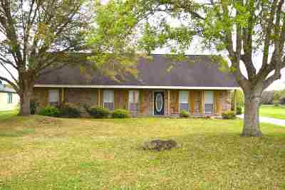 Beaumont Single Family Home For Sale: 8297 Glenbrook Drive