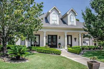 Beaumont Single Family Home For Sale: 3160 Brownstone Pl