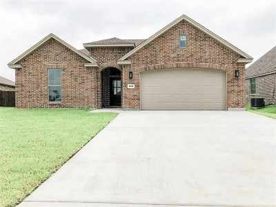 Port Arthur Single Family Home For Sale: 10510 Shady Ranch Ln