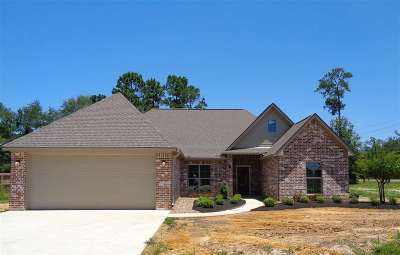 Vidor Single Family Home For Sale: 120 Brianna Ln