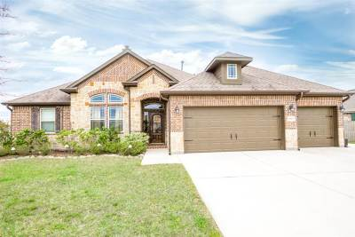 Beaumont Single Family Home For Sale: 14825 Michelle Ln
