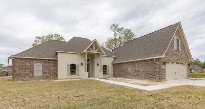 Lumberton Single Family Home For Sale: 8204 Royal Oaks Dr
