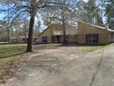 Bevil Oaks Single Family Home For Sale: 13645 Moss Hill