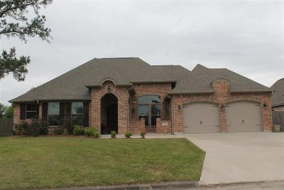 Beaumont Single Family Home For Sale: 6015 Carrie