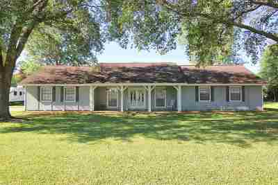 Beaumont Single Family Home For Sale: 203 Greenwood Drive