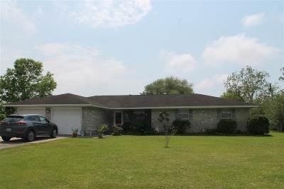 Beaumont Single Family Home For Sale: 2941 Lebonnet Drive