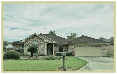 Beaumont Single Family Home For Sale: 6865 Sierra Cir