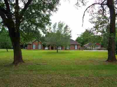 Vidor Single Family Home For Sale: 3460 Evangeline Dr.