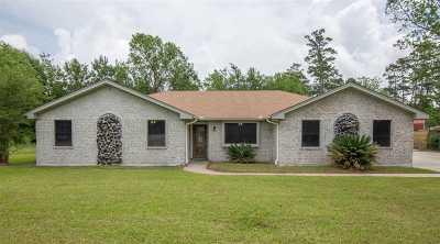 Vidor Single Family Home For Sale: 1175 Kenwood St
