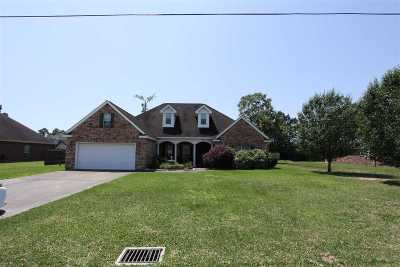 Lumberton Single Family Home For Sale: 132 Stephens Lane
