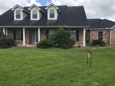 Beaumont TX Single Family Home For Sale: $379,900