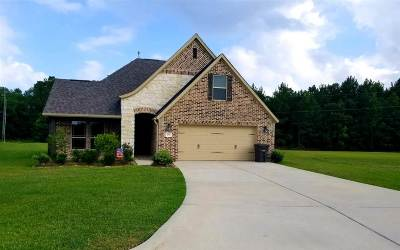 Vidor Single Family Home For Sale: 455 Lakewood Dr.