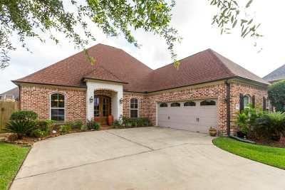 Beaumont Single Family Home For Sale: 7695 Summer Wind