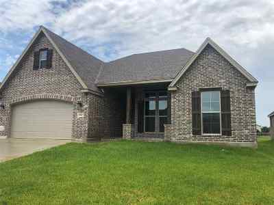 Port Arthur Single Family Home For Sale: 10500 Shady Ranch Lane