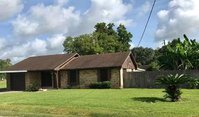 Beaumont Single Family Home For Sale: 9050 Shepherd