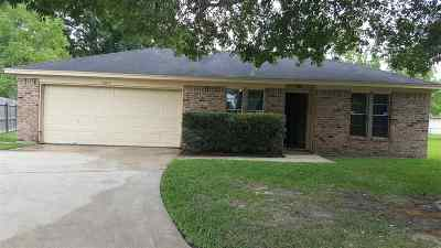 Beaumont Single Family Home For Sale: 9204 Terry Street