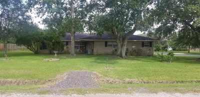 Beaumont Single Family Home For Sale: 10985 Glen Oaks Street