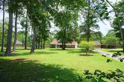 Vidor Single Family Home For Sale: 5930 Highway 12