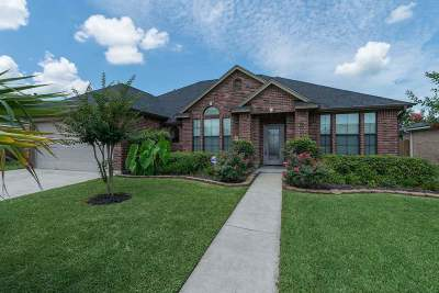 Beaumont Single Family Home For Sale: 3515 Grayson Lane