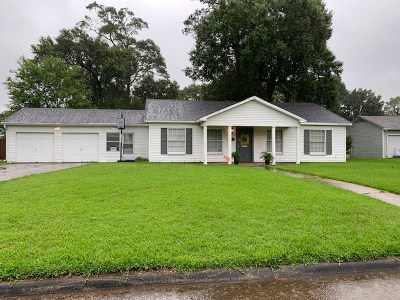 Beaumont Single Family Home For Sale: 780 Yount