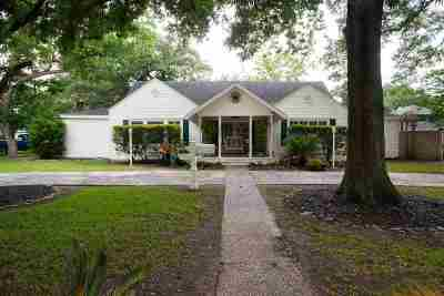 Beaumont Single Family Home For Sale: 229 Central Caldwood