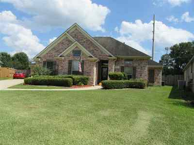 Beaumont Single Family Home For Sale: 8455 Oak Brook Dr