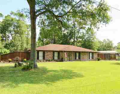 Vidor Single Family Home For Sale: 545 Lyndale