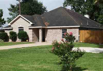 Single Family Home For Sale: 17433 Highway 124
