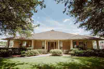 Nederland Single Family Home For Sale: 515 Carriage Lane