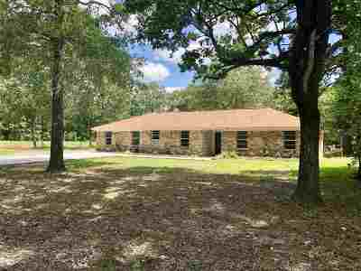 Bevil Oaks Single Family Home For Sale: 13325 Chimney Rock