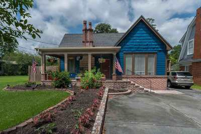 Beaumont Single Family Home For Sale: 875 W Lucas Drive