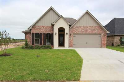 Beaumont Single Family Home For Sale: 3865 Central Pointe' Dr
