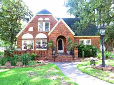 Nederland Single Family Home For Sale: 411 N 13th St