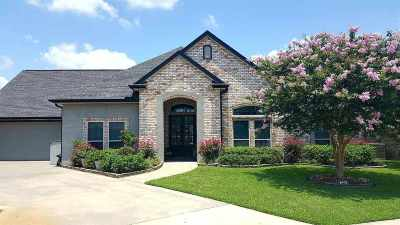 Nederland Single Family Home For Sale: 8370 Lake Placid